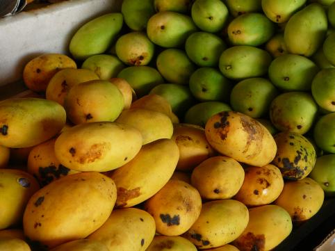 3rdwk_mangoes.jpg