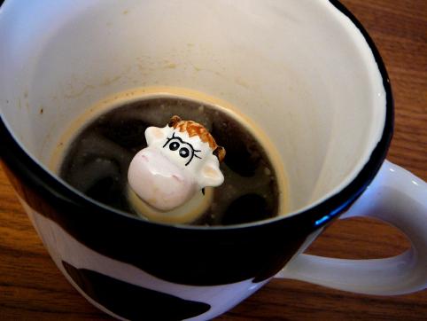 cowincoffee.jpg