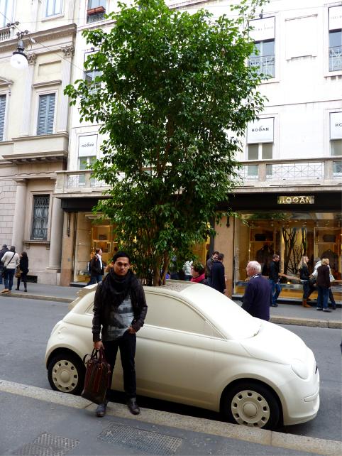 Fiat Planters